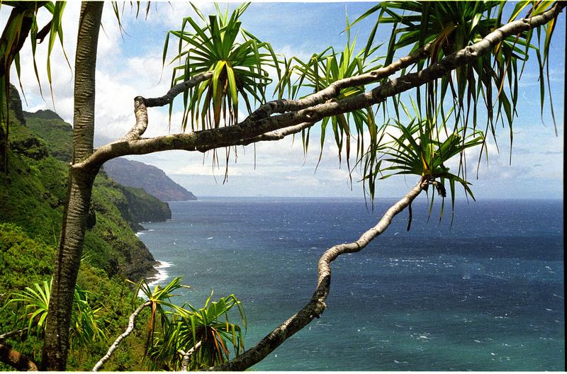 Napali Coast, Kawaii